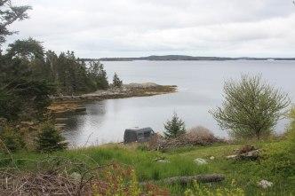 Norse Cove -4
